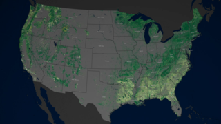 Link to Recent Story entitled: Mapping Forests Through Time
